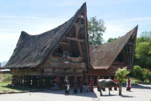 Erholung und Kultur auf Samosir