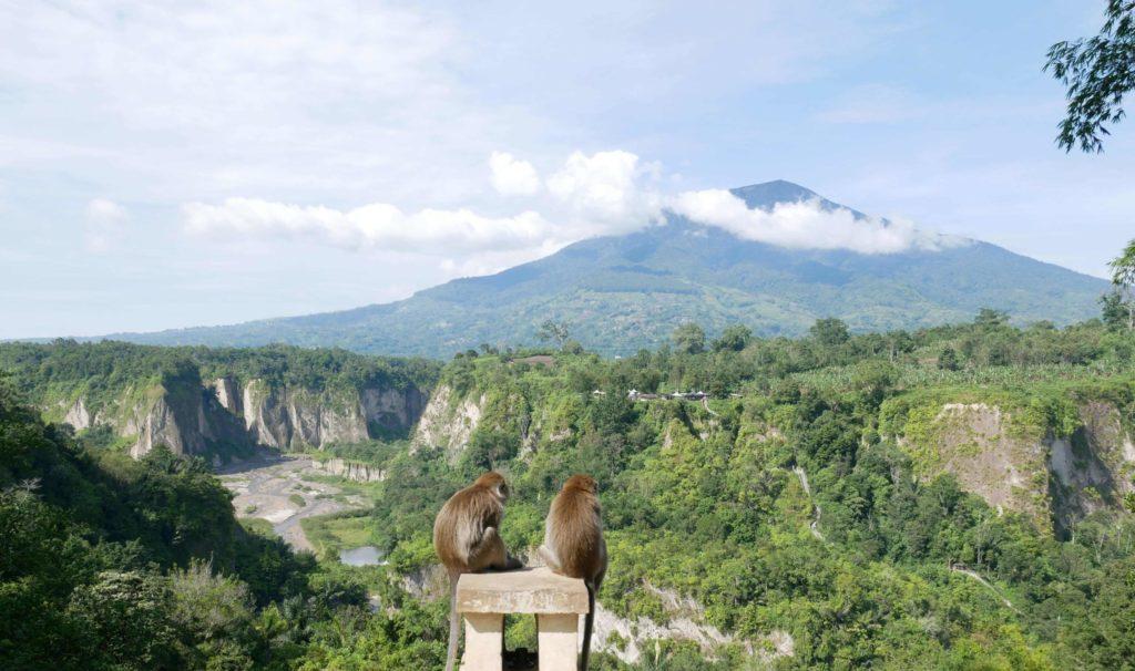 Bukittinggi: Panorama-Park