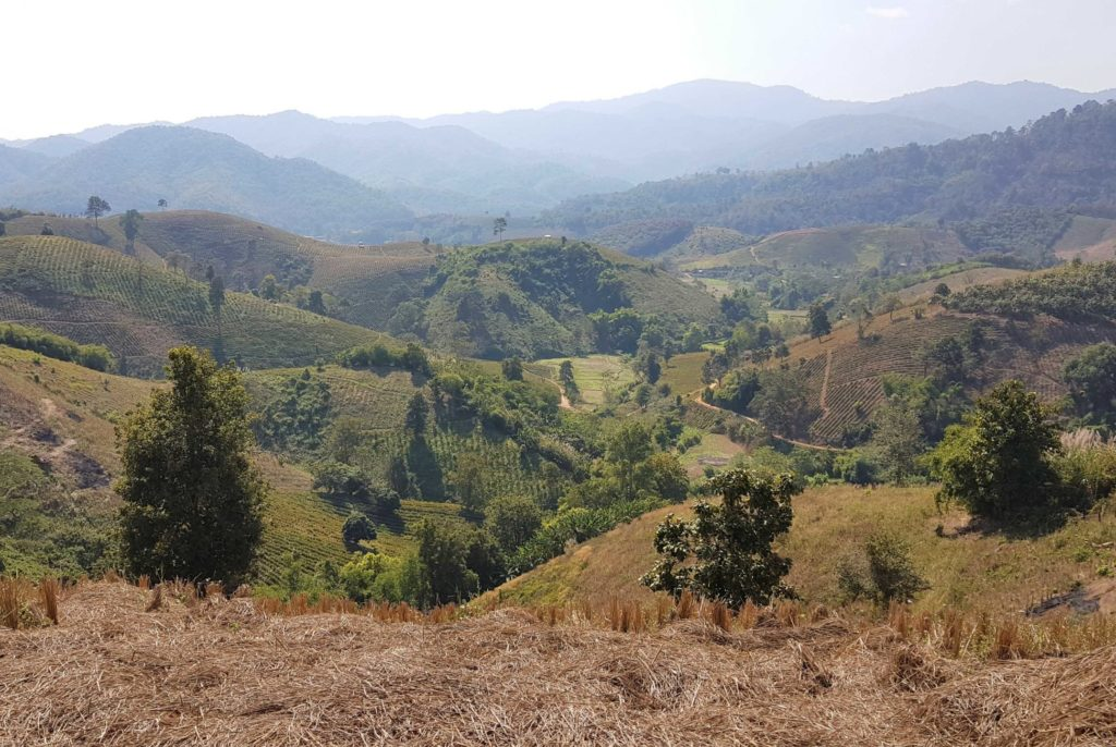 Trekking Chiang Rai: Bergland